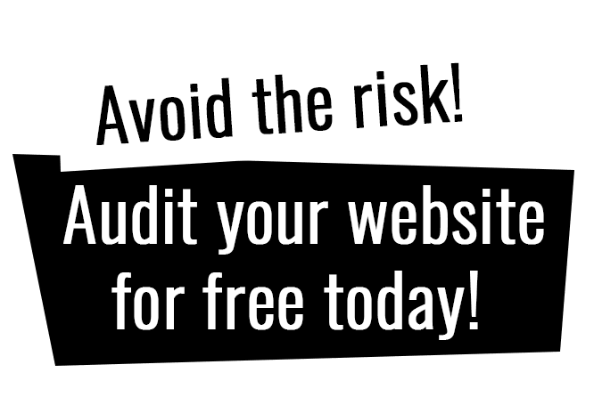 Avoid the risk! Audit your website for free today!